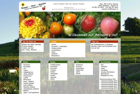 ammanns-hof.ch