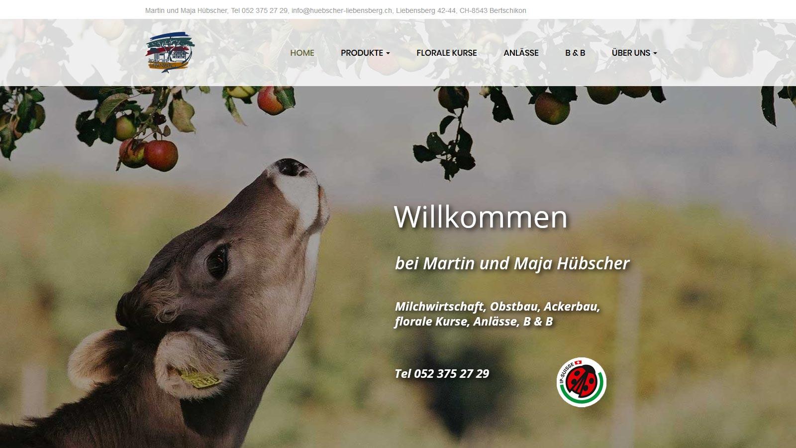 www.huebscher-liebensberg.ch