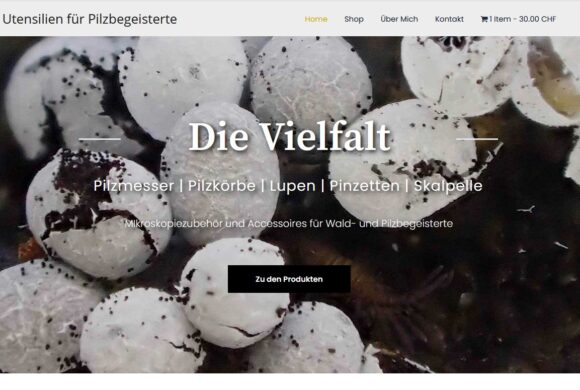 silvana-fueglistaler.ch